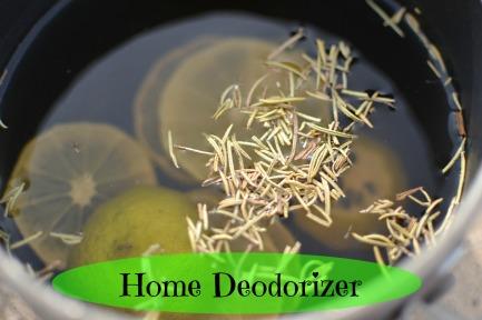 Home Deodorizer