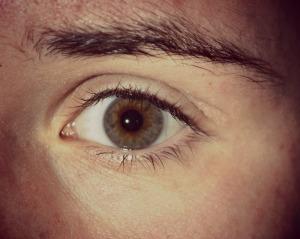 Noah's Eye
